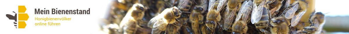 Mein Bienenstand